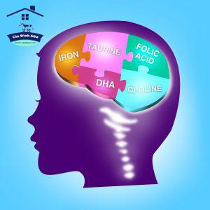 CHOLINE LÀ GÌ ? Choline là một dưỡng chất thiết yếu, tối quan trọng cho tất cả các tế bào trong cơ thể, đặc biệt quan trọng đối với sự phát triển của não bộ ở trẻ sơ sinh.Choline là một chất dinh dưỡng quan trọng tương tự như các Vitamin B, là thành viên […]
