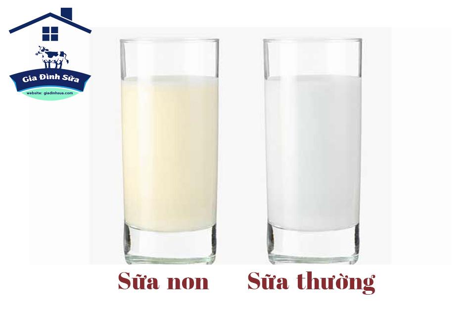 Sữa non là gì?